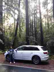 2017 Audi Q7- Redwood Forest