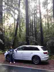 2017 Audi Q7- Redwood Forest